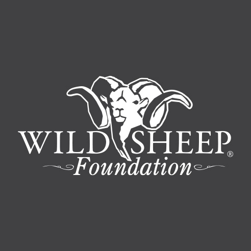 Wild Sheep Foundation Applauds New Nevada Desert Bighorn Population