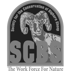Society for the Conservation of Bighorn Sheep
