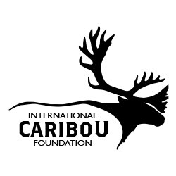 International Caribou Foundation