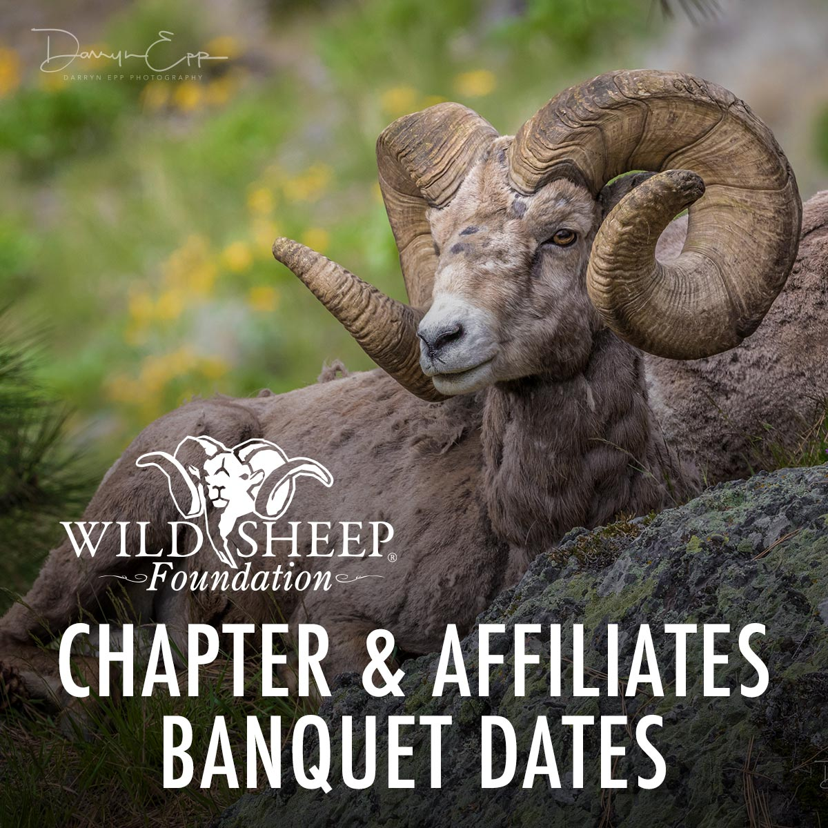 WSF Chapter & Affiliate Banquet Dates