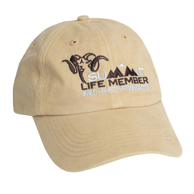 Summit Life Member Hat