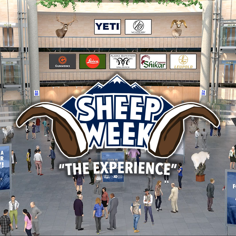 SHEEP WEEK® A Virtual Success