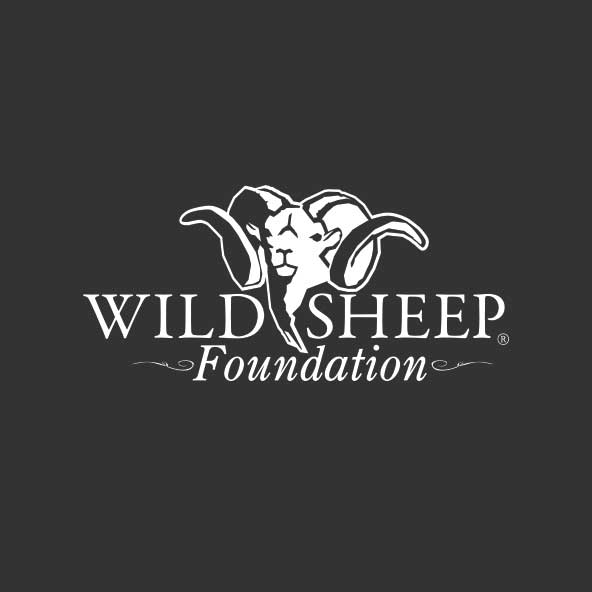 Wild Sheep Foundation Heads to Capitol Hill
